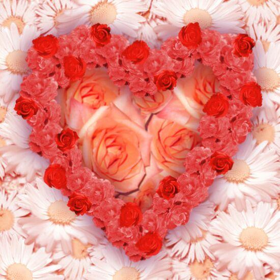 احبكـ احبكـ احبكـ flower_heart.jpg