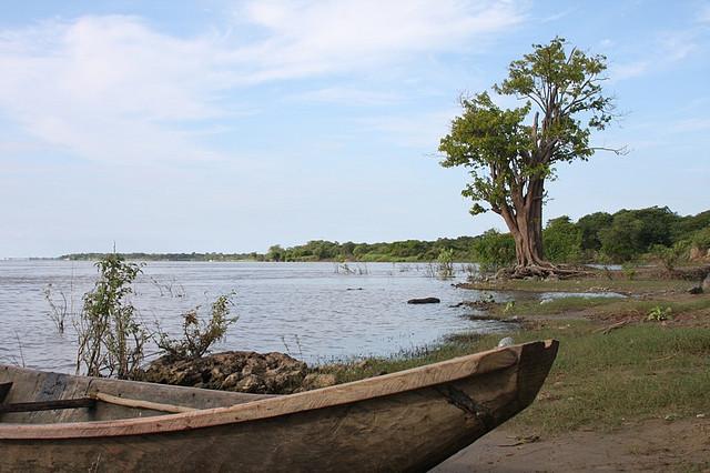 Parmana, estado guárico